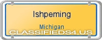 Ishpeming board